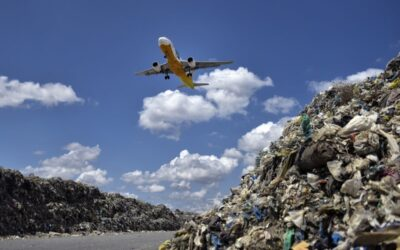 Where Does Leftover Food From Planes Go?
